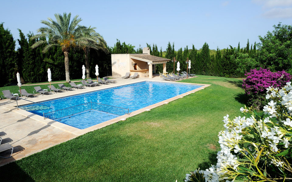 Swimming pool surrounded by garden area